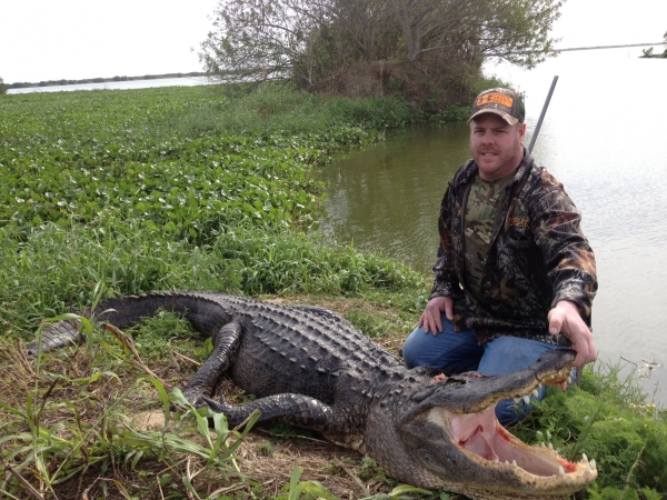 Alligators Hunting Guide