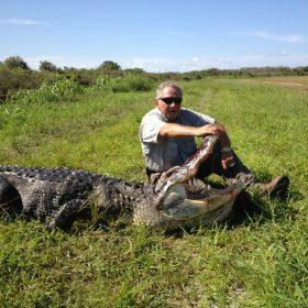 Central Florida Wild Alligator Hunts