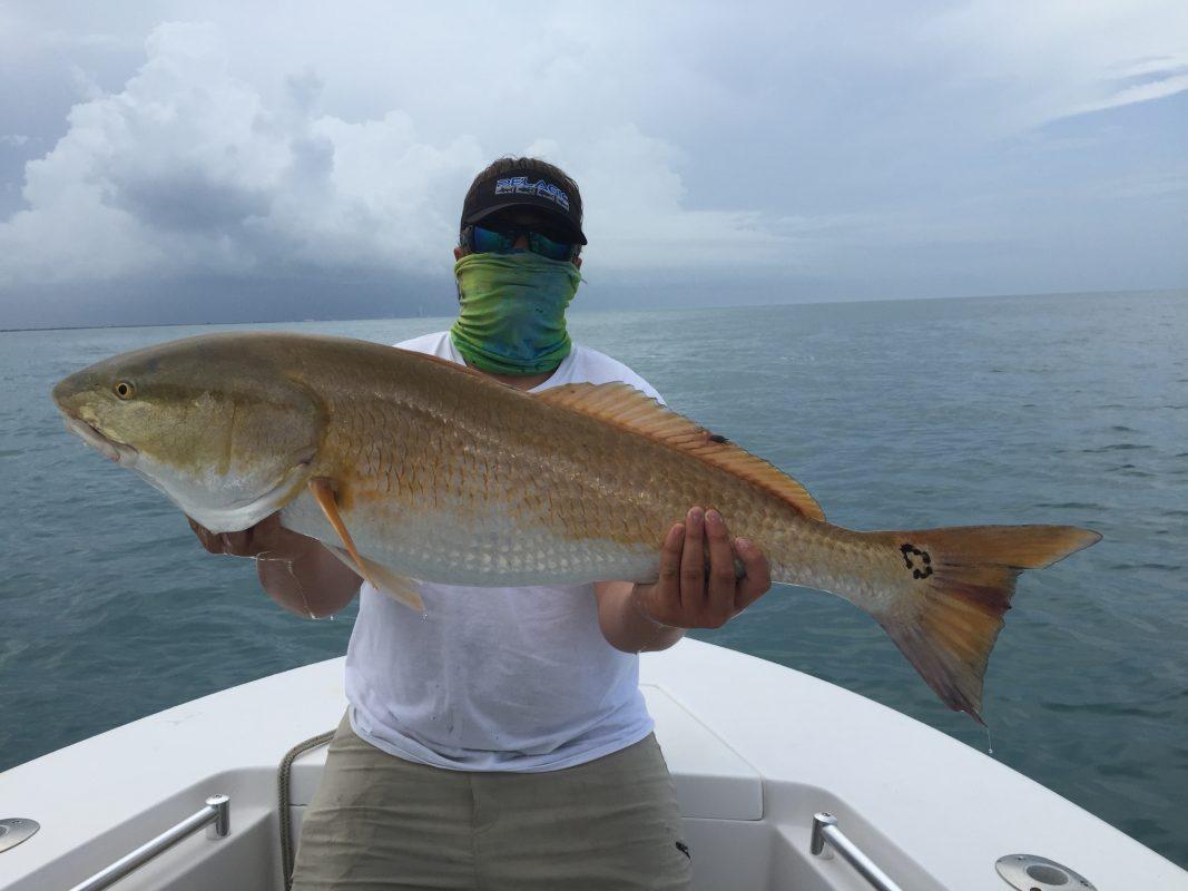 Charter Fishing, Florida