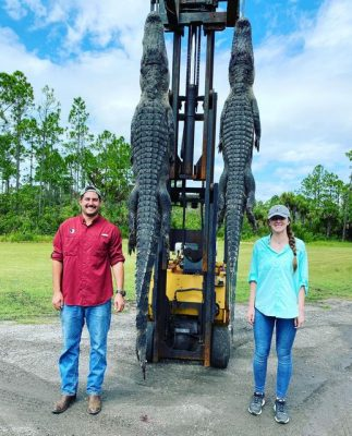Awesome gator hunt with this couple. TEAMCFTH  ———————— Visi...