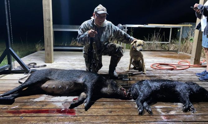 Beautiful afternoon in the woods!  Alfred shot a nice boar s...