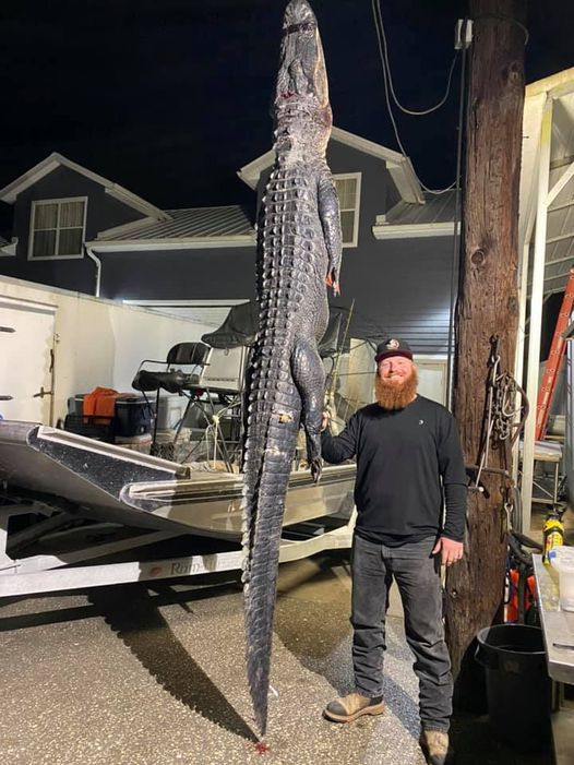 Coming down the home stretch on the 2020 Public Gator Season...