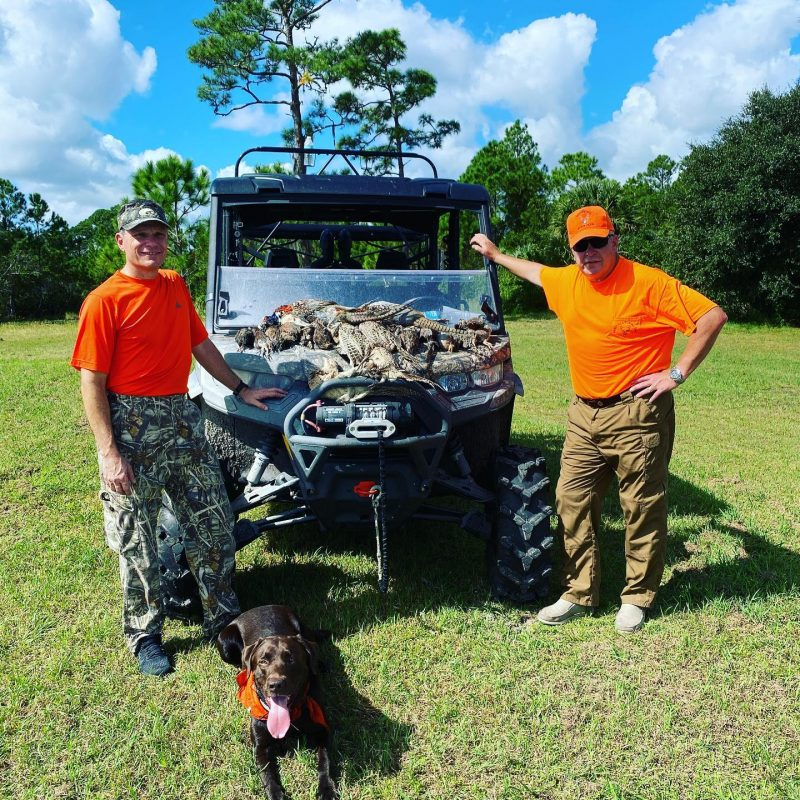 Great day of quail and pheasant hunting today at P4 Ranch.
