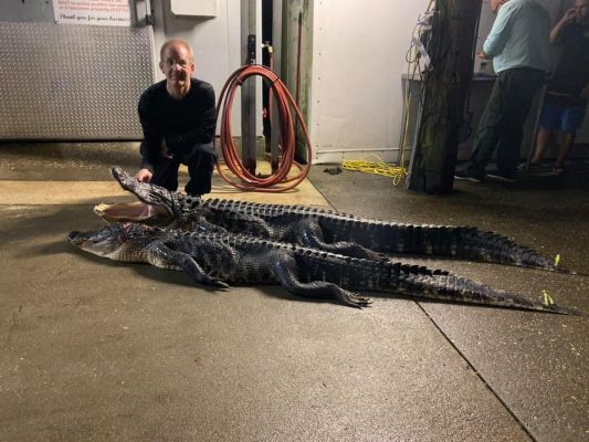 Brent from Colorado with a pair of nice gators.