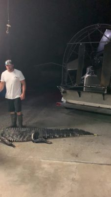 First gator to our Cocoa location! They keep rolling in!