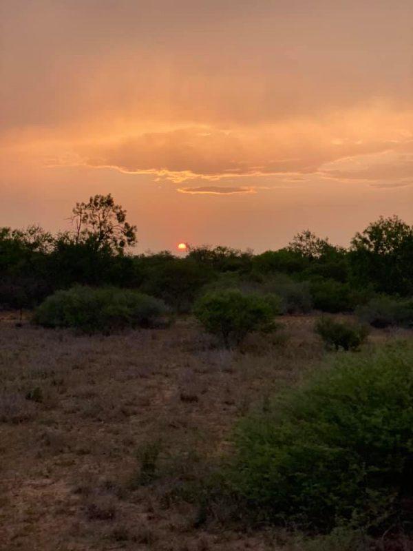 Beautiful South Texas Sunset.   Big things coming!!!!
